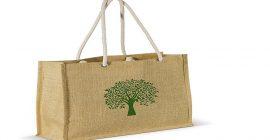 ¿Cuáles son los productos reutilizables y biodegradables que existen en el mercado?